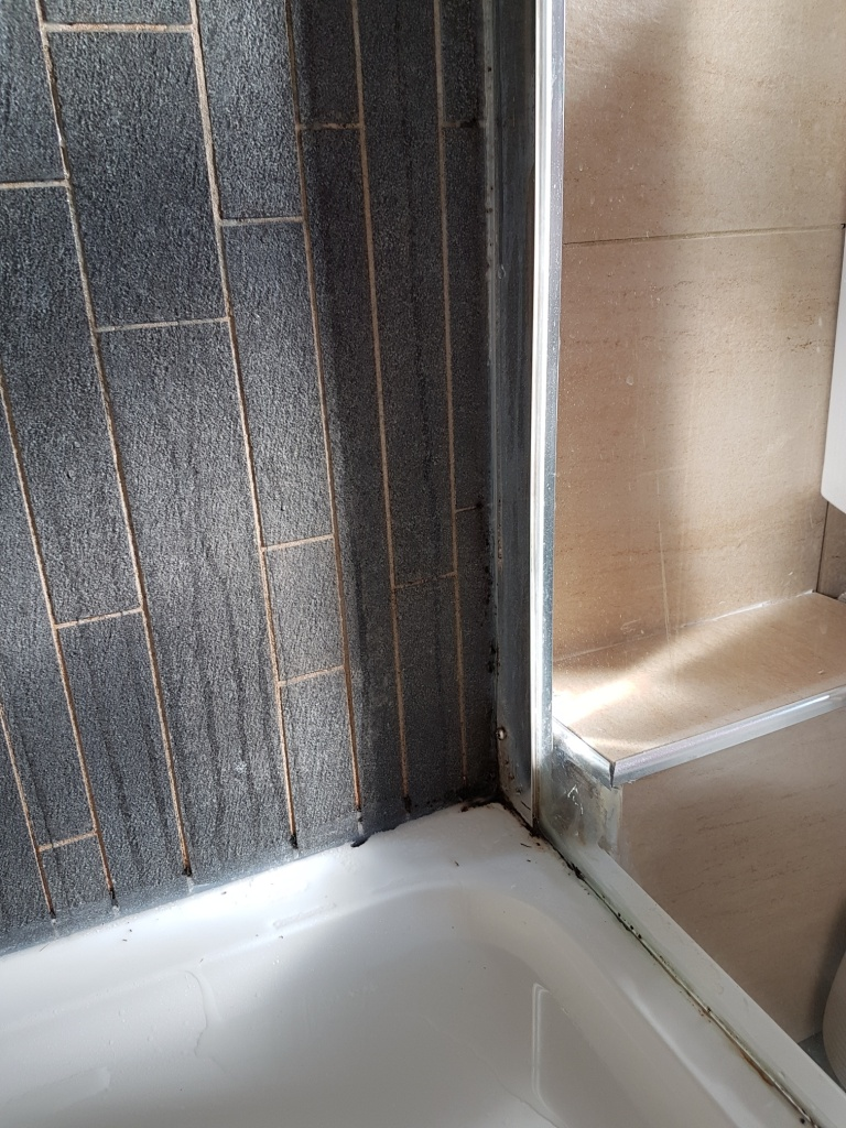 Mouldy Porcelain Shower Cubicle Before Cleaning Osmotherley